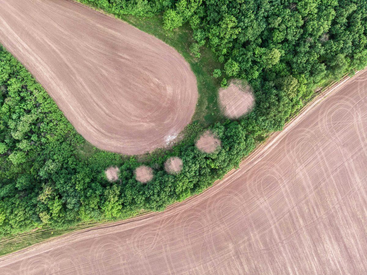 6 consejos para reducir el impacto de tu huella ecológica